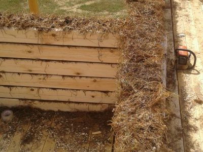 Утепление дома из бруса мхом