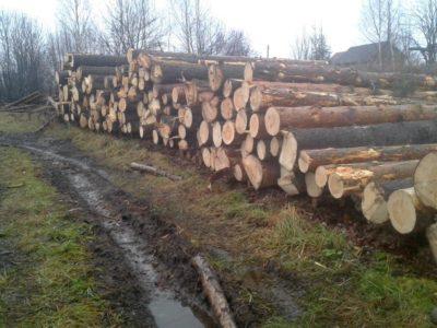 Качественная, экологически чистая древесина с севера Костромской области для строительства надёжных домов